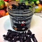 Black Garlic San Diego